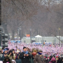 The crowds stretched down the entire length of the Capitol Mall.