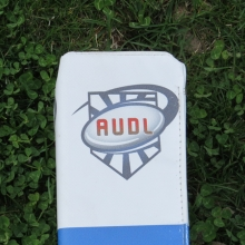 An American Ultimate Disc League end zone marker.