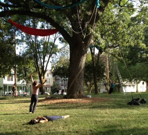 Cycropias Performance At Orton Park >> Mythical Tree Spirit To Fly At Orton Park Fest Willy Street Blog