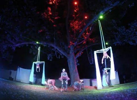 Cycropias Performance At Orton Park >> Cycropia Dazzles Orton Willy Street Blog