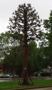 TreeVandal_CW